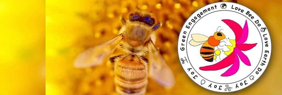 ハチ育と奇跡のハチミツ 一般社団法人ハニーファーム
